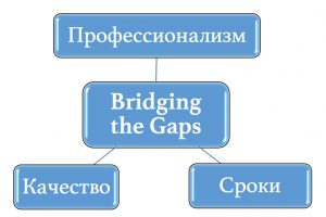 Миссия компании Bridging the Gaps